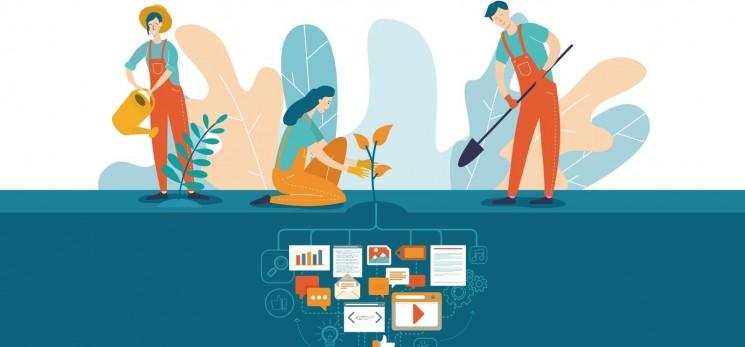 Tầm quan trọng của Content seeding đối với doanh nghiệp